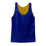 Reversible Pinnies